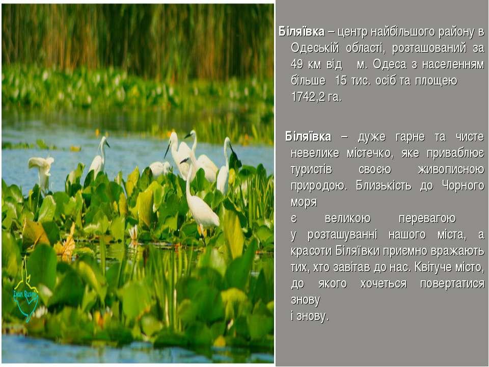 Біляївка – центр найбільшого району в Одеській області, розташований за 49 км...