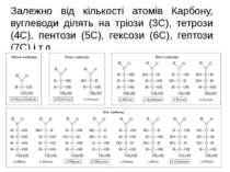 Залежно від кількості атомів Карбону, вуглеводи ділять на тріози (3С), тетроз...