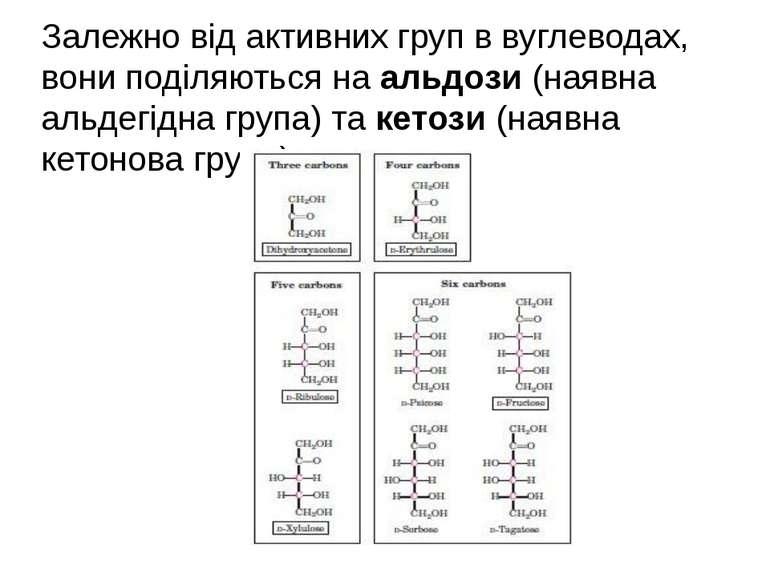Залежно від активних груп в вуглеводах, вони поділяються на альдози (наявна а...