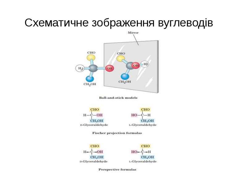 Схематичне зображення вуглеводів