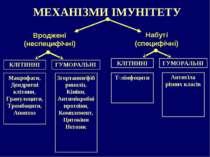 МЕХАНІЗМИ ІМУНІТЕТУ Набуті (специфічні) Вроджені (неспецифічні) КЛІТИННІ ГУМО...