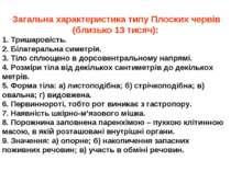 Загальна характеристика типу Плоских червів (близько 13 тисяч): 1. Тришаровіс...