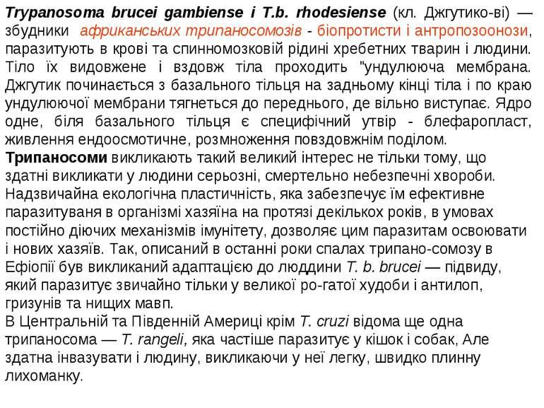 Trypanosoma brucei gambiense і T.b. rhodesiense (кл. Джгутико ві) — збудники ...