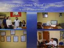 """Ветеринарна клініка """"Фауна"""" (приймальна та кабінет зав.клінікою)"""