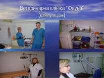 """Ветеринарна клініка """"Фауна"""" (маніпуляційні)"""