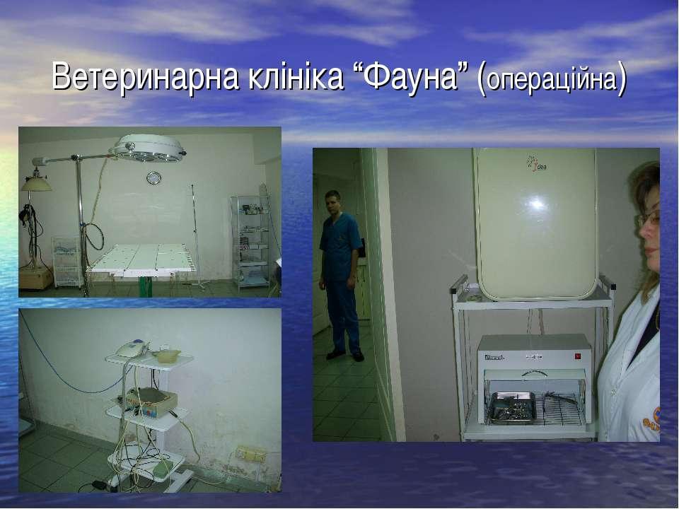 """Ветеринарна клініка """"Фауна"""" (операційна)"""