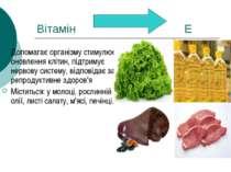 Вітамін Е Допомагає організму стимулює оновлення клітин, підтримує нервову си...