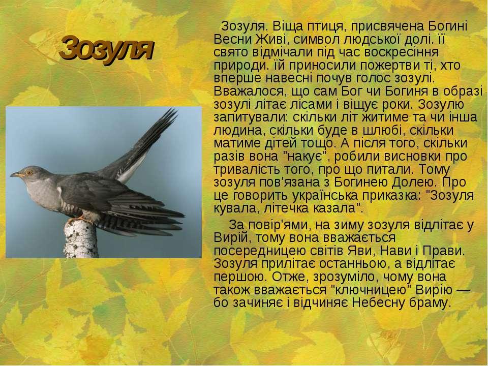 Зозуля Зозуля. Віща птиця, присвячена Богині Весни Живі, символ людської долі...