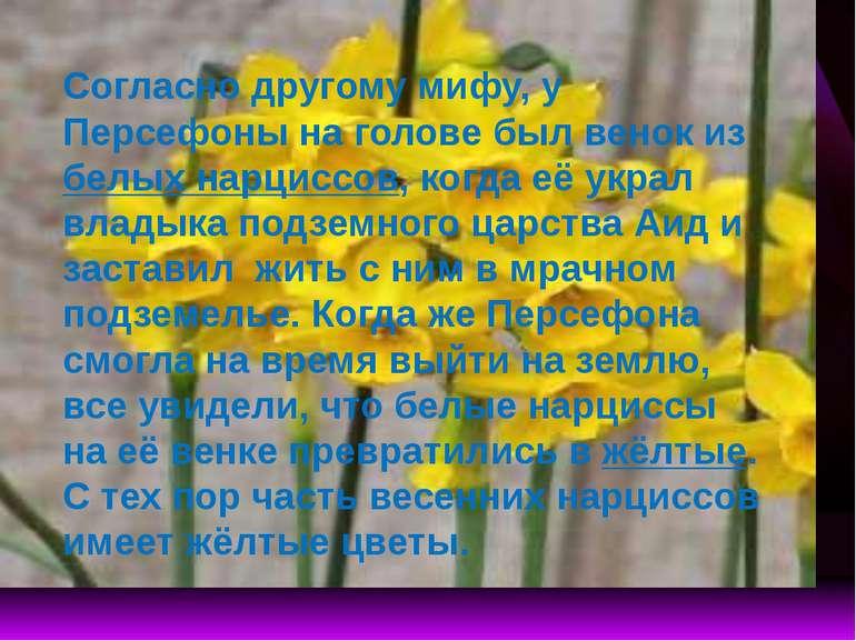 Согласно другому мифу, у Персефоны на голове был венок из белых нарциссов, ко...