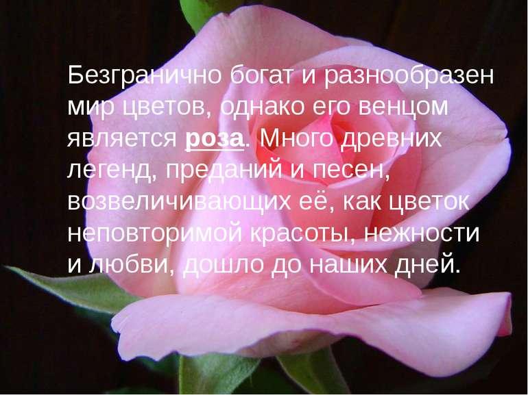 Безгранично богат и разнообразен мир цветов, однако его венцом является роза....