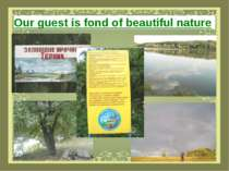 Our guest is fond of beautiful nature