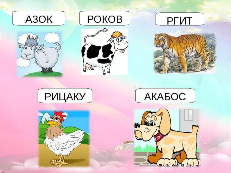 АЗОК РОКОВА РГИТ РИЦАКУ АКАБОС