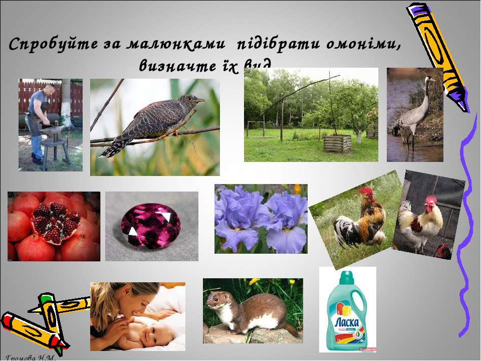 Спробуйте за малюнками підібрати омоніми, визначте їх вид Громова Н.М. Громов...