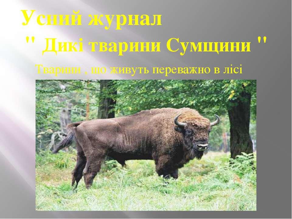 """Усний журнал """" Дикі тварини Сумщини """" Тварини , що живуть переважно в лісі"""