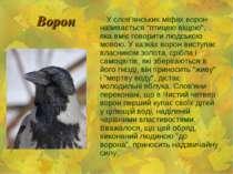 """Ворон У слов'янських міфах ворон називається """"птицею віщою"""", яка вміє говорит..."""