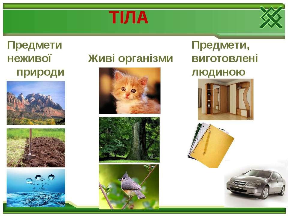 Предмети неживої природи Живі організми Предмети, виготовлені людиною ТІЛА