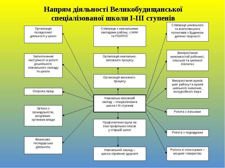 Напрям діяльності Великобудищанської спеціалізованої школи І-ІІІ ступенів