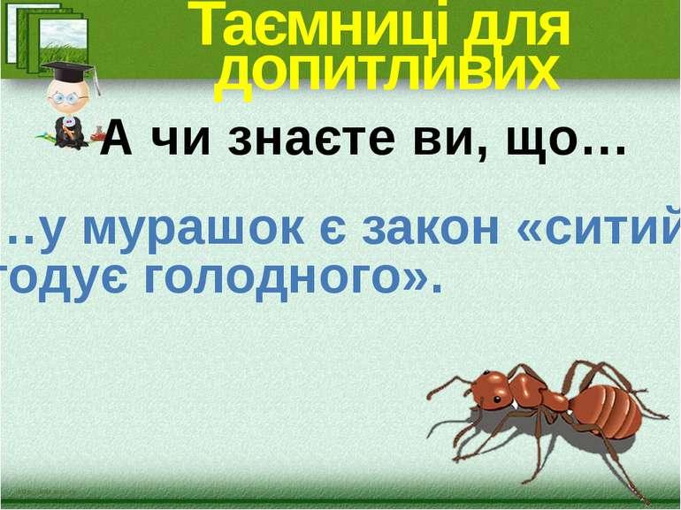 Таємниці для допитливих …у мурашок є закон «ситий годує голодного». А чи знає...
