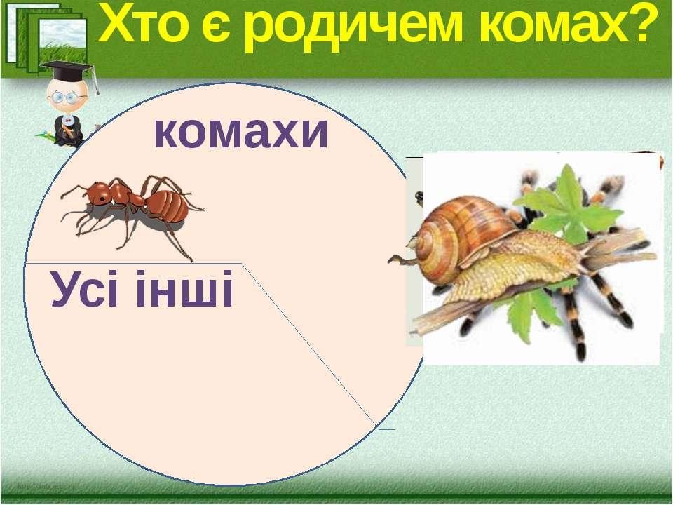 Хто є родичем комах? комахи Усі інші