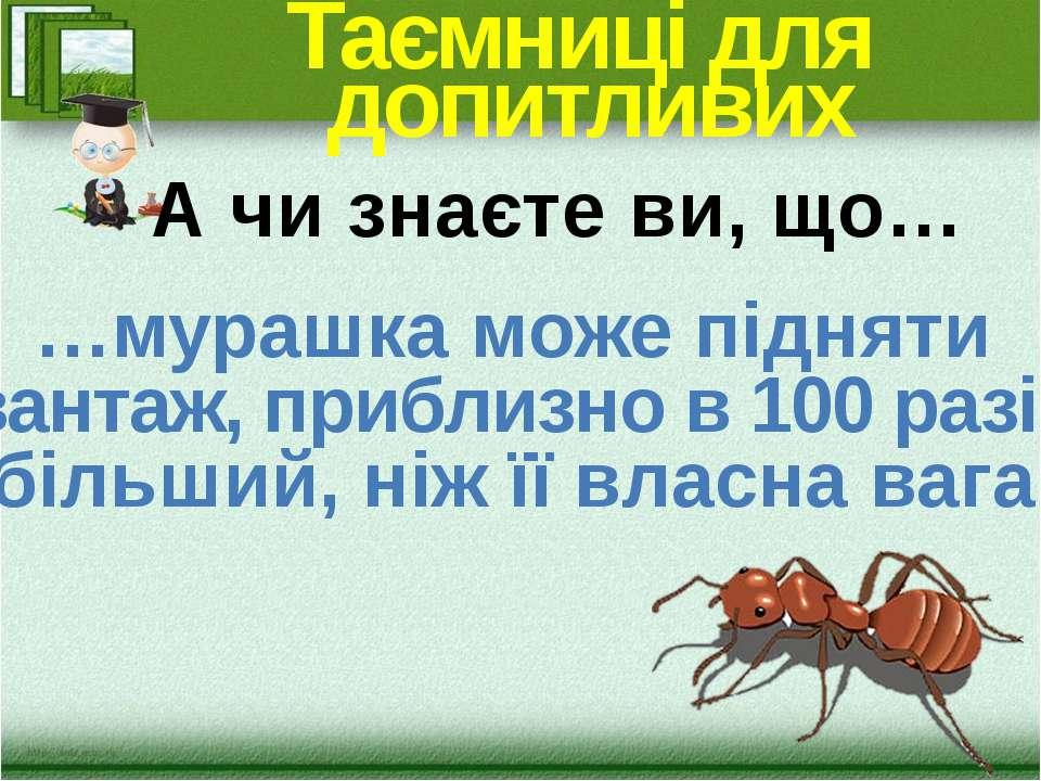 Таємниці для допитливих …мурашка може підняти вантаж, приблизно в 100 разів б...