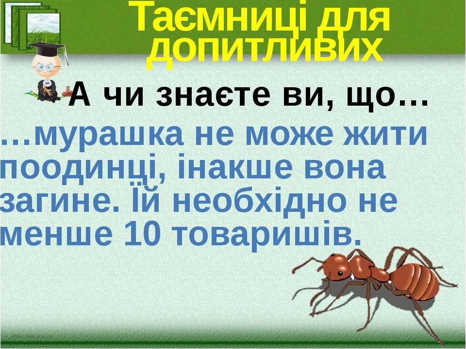 Таємниці для допитливих …мурашка не може жити поодинці, інакше вона загине. Ї...