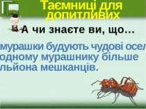 Таємниці для допитливих …мурашки будують чудові оселі. В одному мурашнику біл...