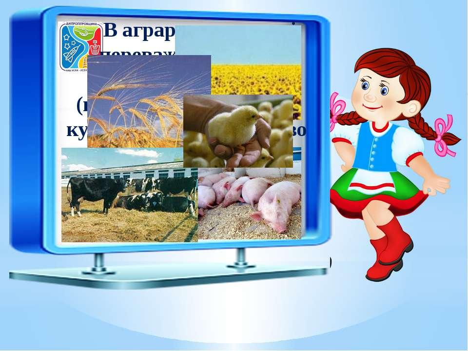 В аграрному секторі переважає зернове господарство (виробництво пшениці, куку...