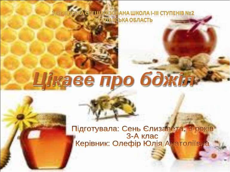 цікаве про бджіл