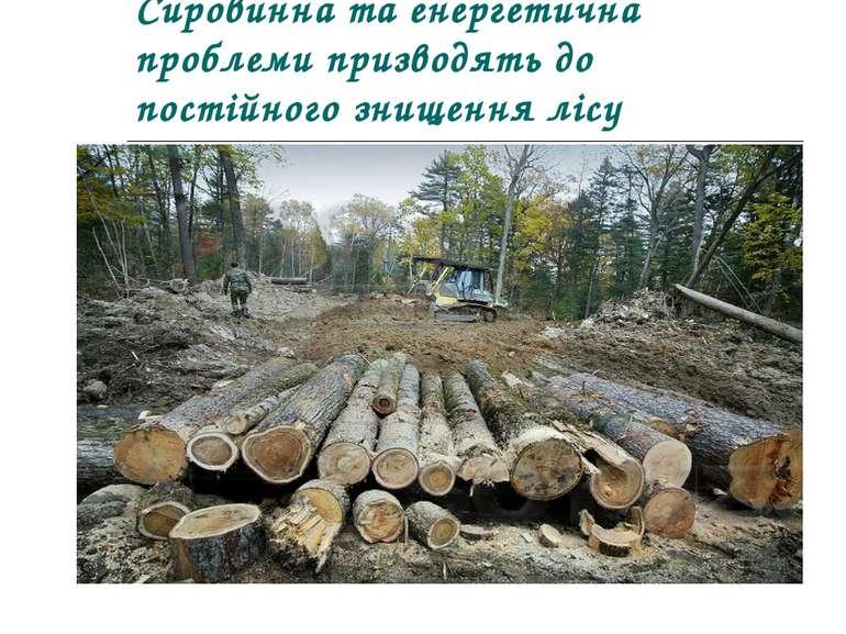Сировинна та енергетична проблеми призводять до постійного знищення лісу