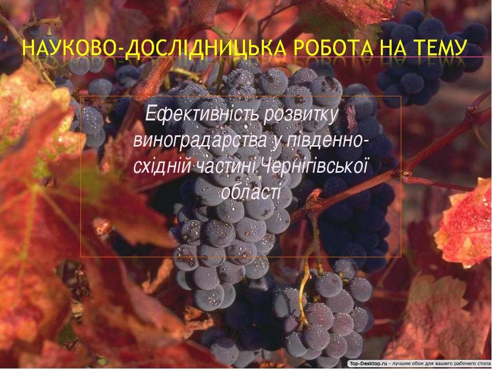 Ефективність розвитку виноградарства у південно-східній частині Чернігівської...