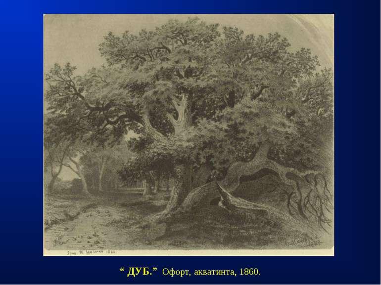 """"""" ДУБ."""" Офорт, акватинта, 1860."""