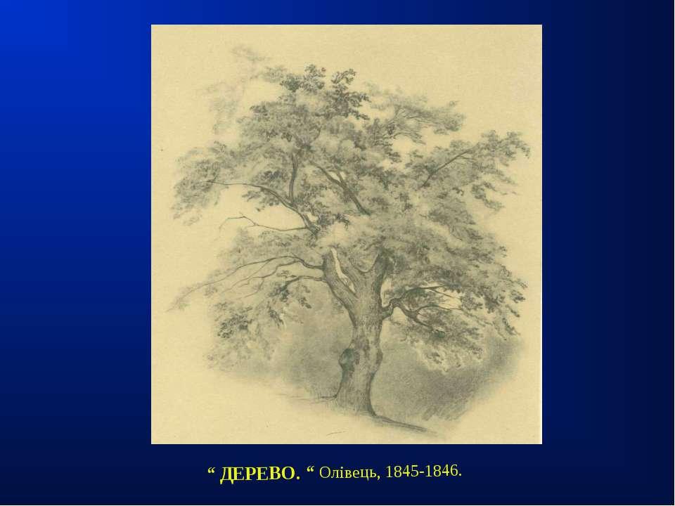 """"""" ДЕРЕВО. """" Олівець, 1845-1846."""