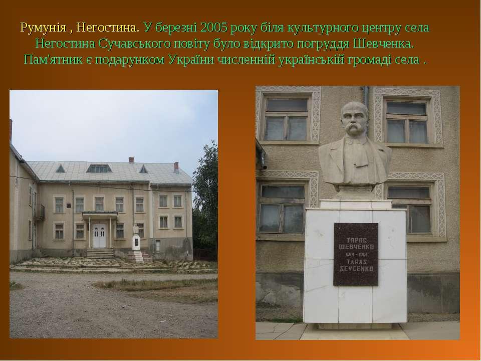 Румунія , Негостина. У березні 2005 року біля культурного центру села Негости...