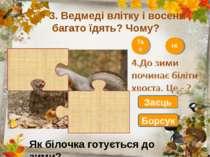 3. Ведмеді влітку і восени багато їдять? Чому? Так Ні Заєць Борсук Як білочка...