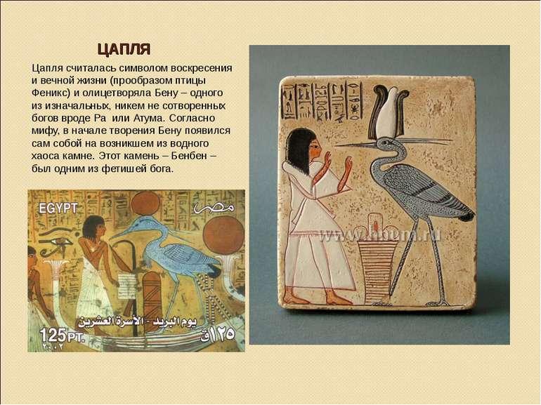 ЦАПЛЯ Цапля считалась символом воскресения и вечной жизни (прообразом птицы Ф...