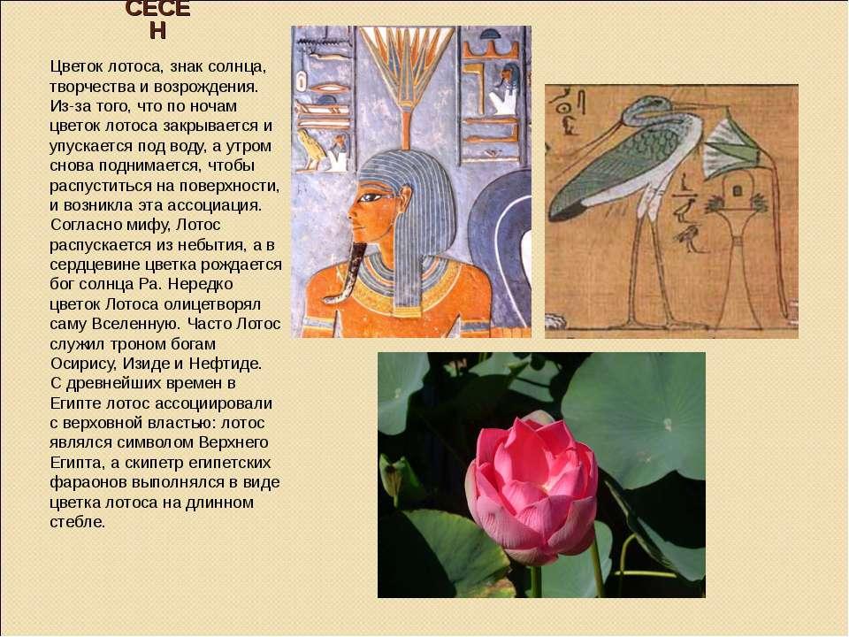 СЕСЕН Цветок лотоса, знак солнца, творчества и возрождения. Из-за того, что п...