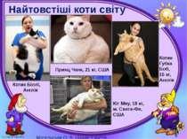 Найтовстіші коти світу Котик Біллі, Англія Принц Чанк, 21 кг, США Кіт Мяу, 18...