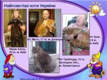 Найтовстіші коти України Кіт Матіс, 17 кг, м. Донецьк Кішка Аліса, 20 кг, м. ...