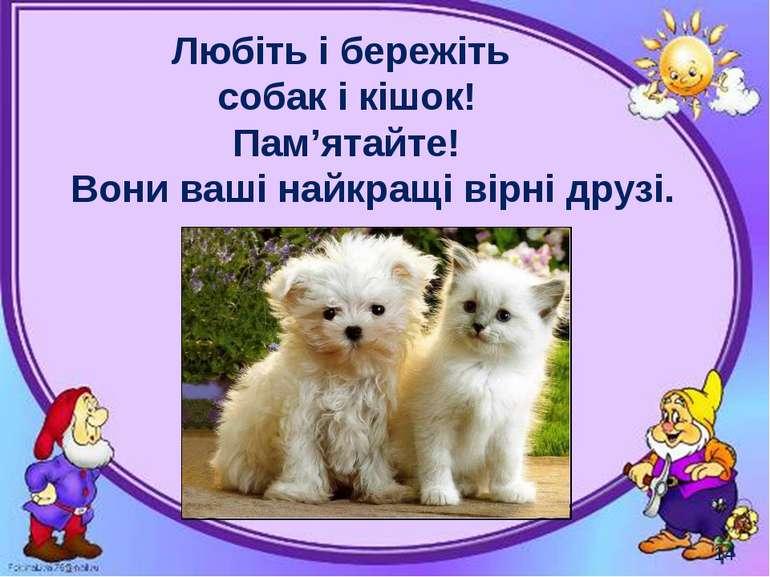 Любіть і бережіть собак і кішок! Пам'ятайте! Вони ваші найкращі вірні друзі. ...