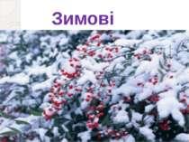 Зимові