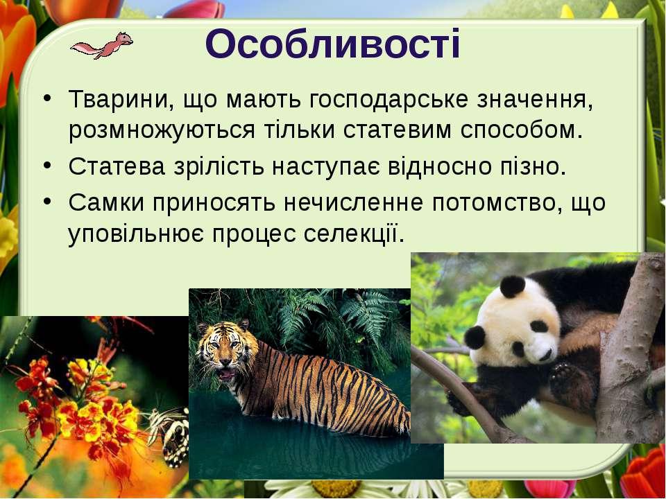 Особливості Тварини, що мають господарське значення, розмножуються тільки ста...