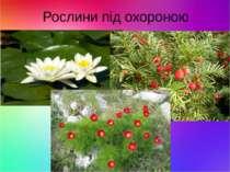 Рослини під охороною
