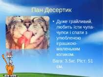 Пан Десертик Дуже грайливий, любить їсти чупа-чупси i спати з улюбленою iграш...