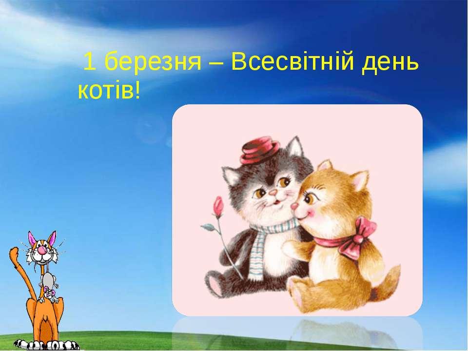 1 березня – Всесвітній день котів!