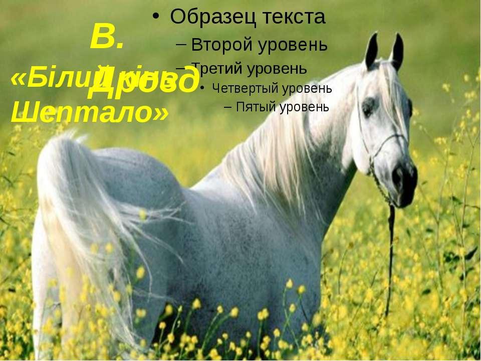 В. Дрозд «Білий кінь Шептало»