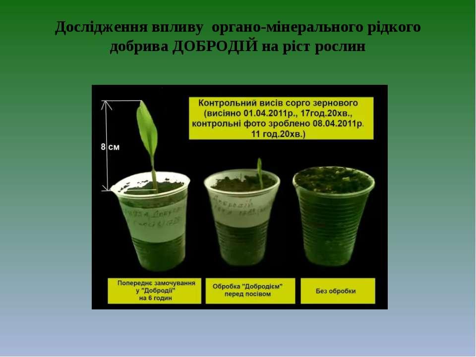 Дослідження впливу органо-мінерального рідкого добрива ДОБРОДІЙ на ріст рослин
