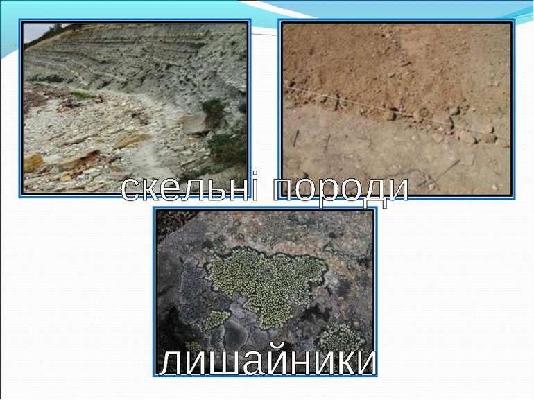 скельні породи