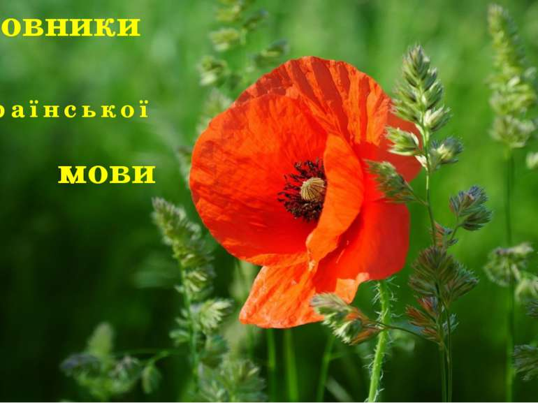 Словники Української мови