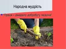 """Народна мудрість """"Праця – джерело добробуту людини"""""""