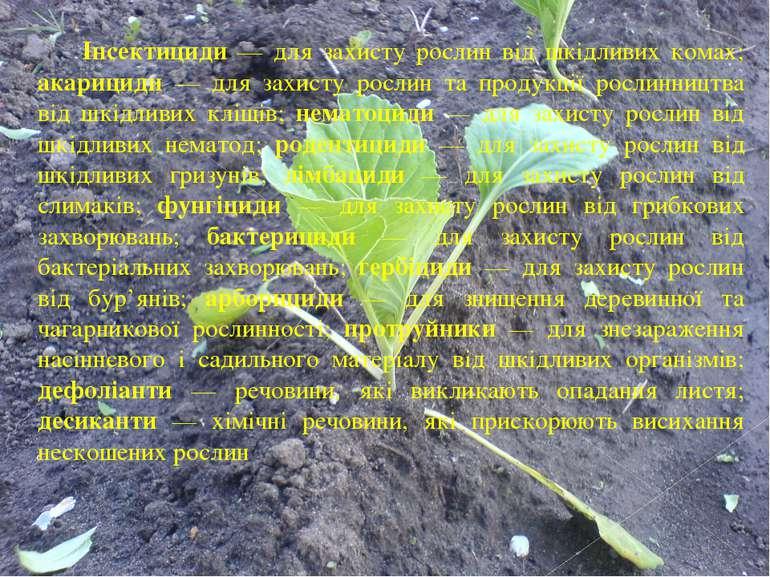 Інсектициди — для захисту рослин від шкідливих комах; акарициди — для захисту...
